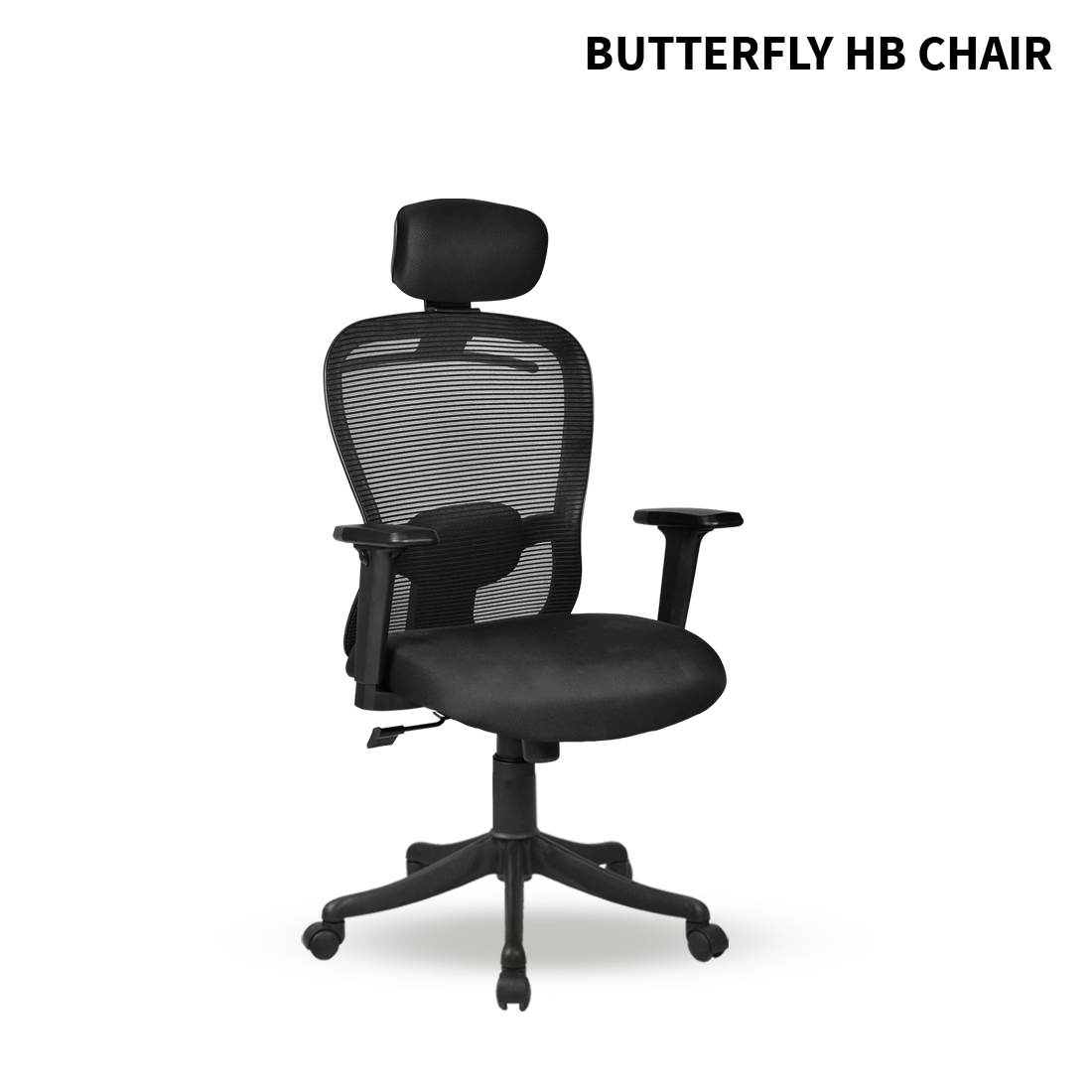 BUTTERFLY - HB - ANGLE - 001