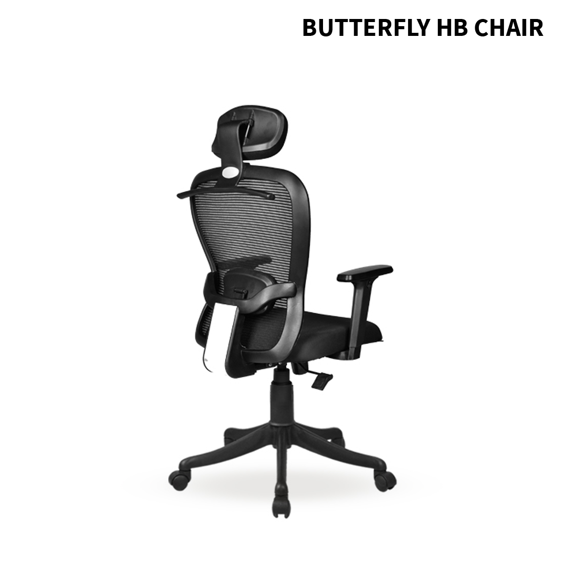 BUTTERFLY - HB - ANGLE - 005